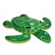 WS / Turtle